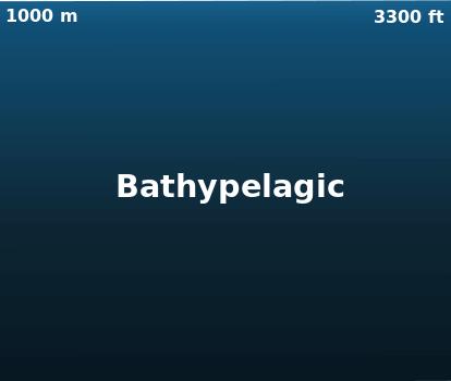 Otherworldly Incantations Deep Sea Worldbuilding Bathyl