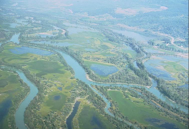 Otherworldly Incantations River Worldbuilding Anastomosed River