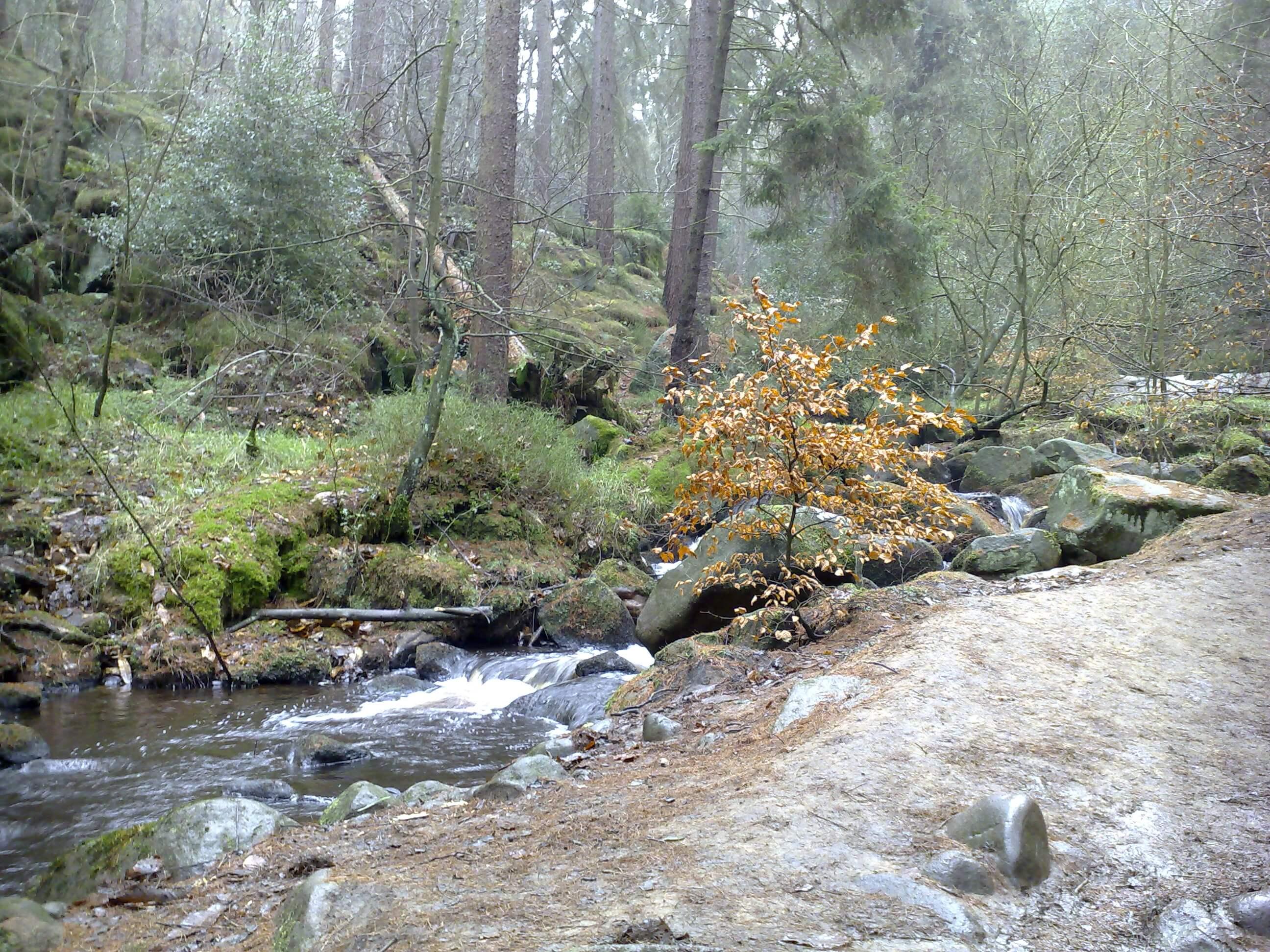Otherworldly Incantations River Worldbuilding Brook