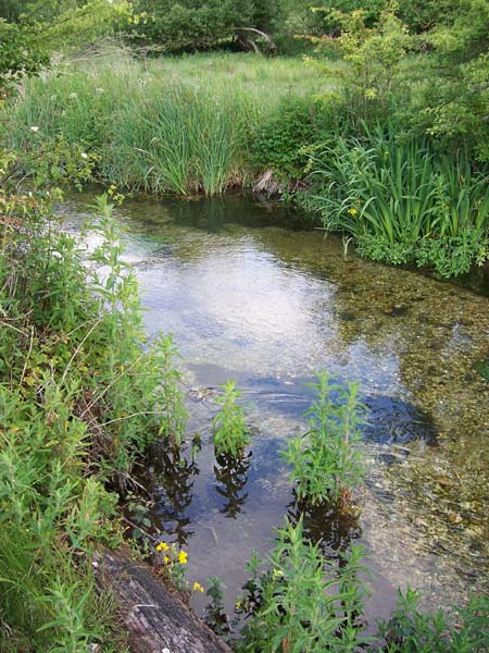 Otherworldly Incantations River Worldbuilding Chalk Stream