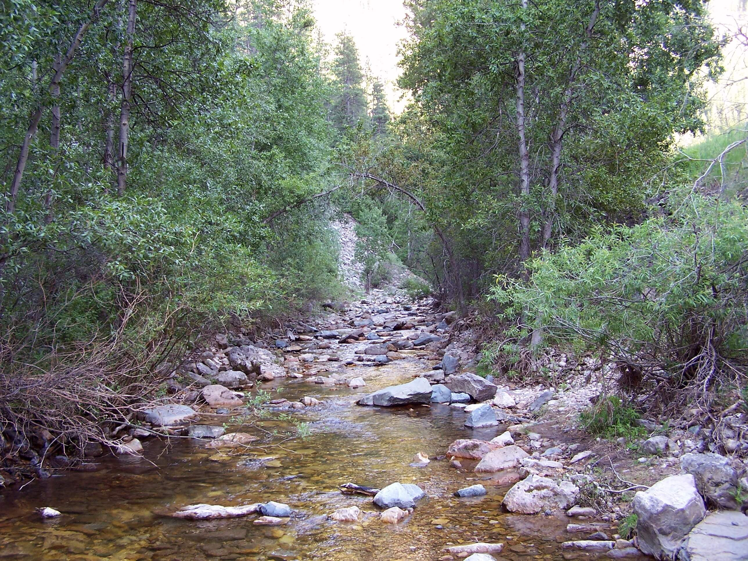 Otherworldly Incantations River Worldbuilding Creek