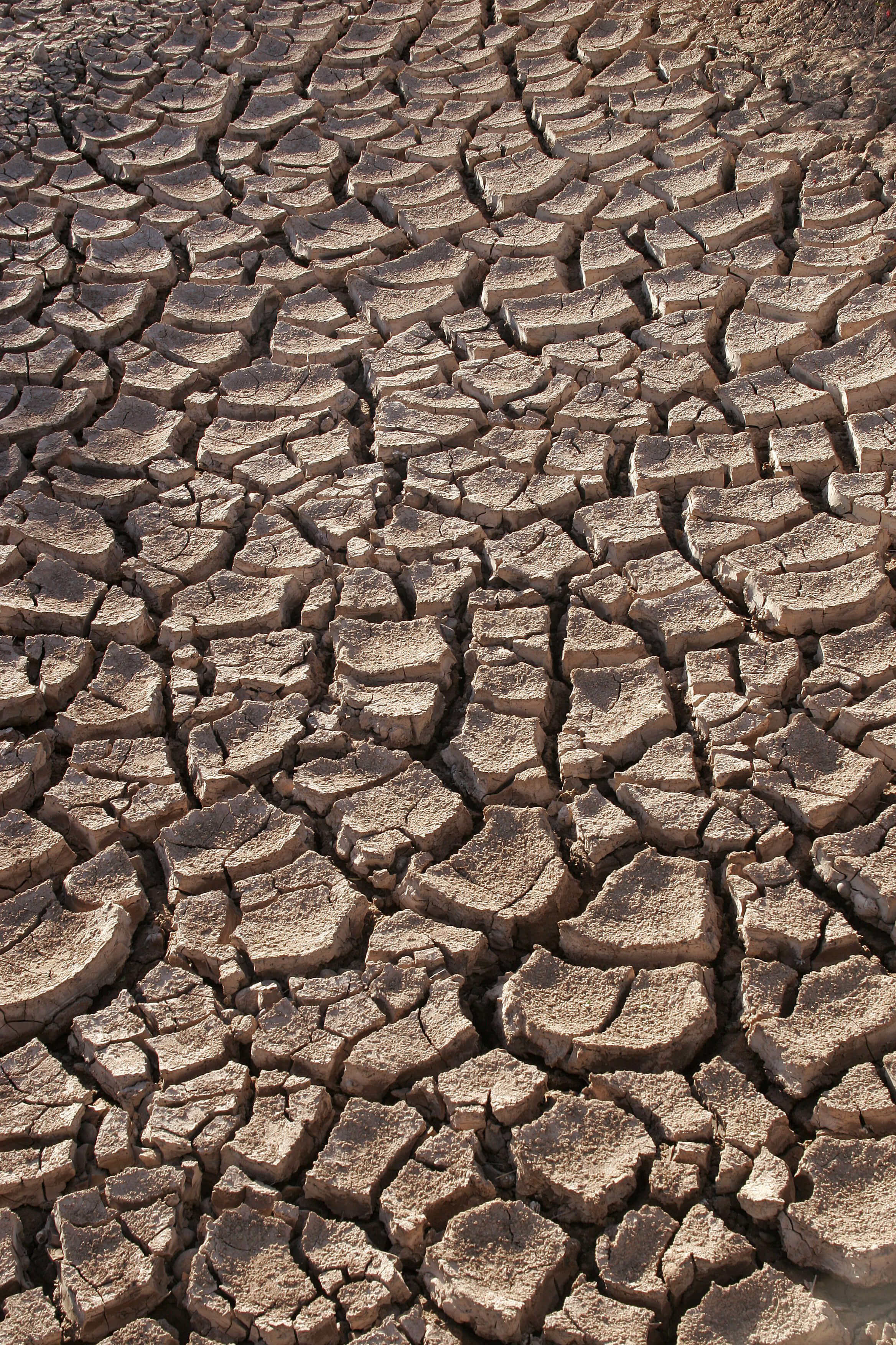 Otherworldly Incantations Weather Worldbuilding Drought