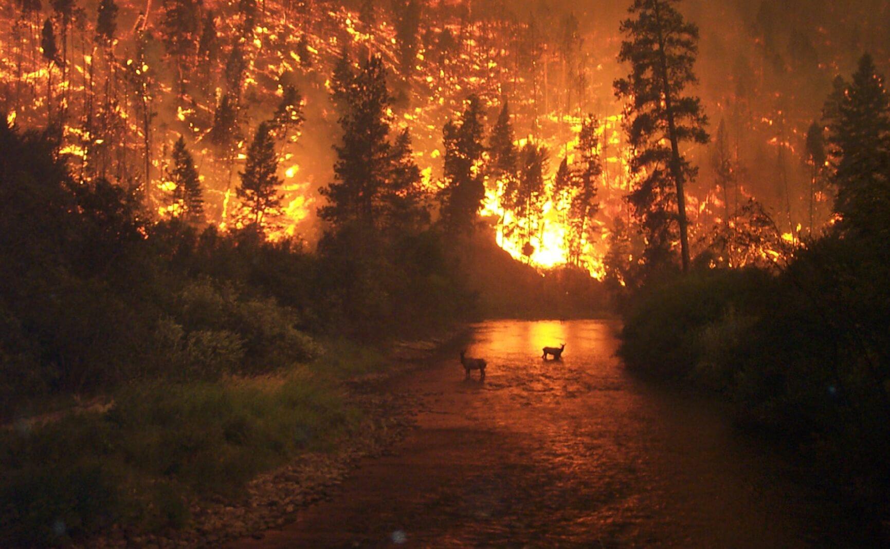 Otherworldly Incantations Weather Worldbuilding Firestorm