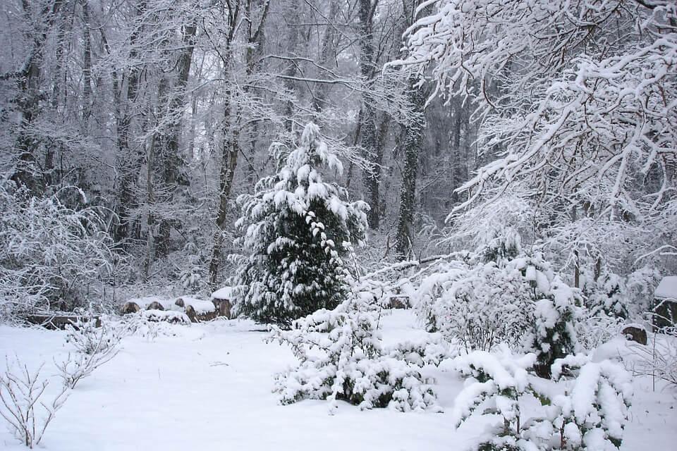 Otherworldly Incantations Weather Worldbuilding Snowstorm