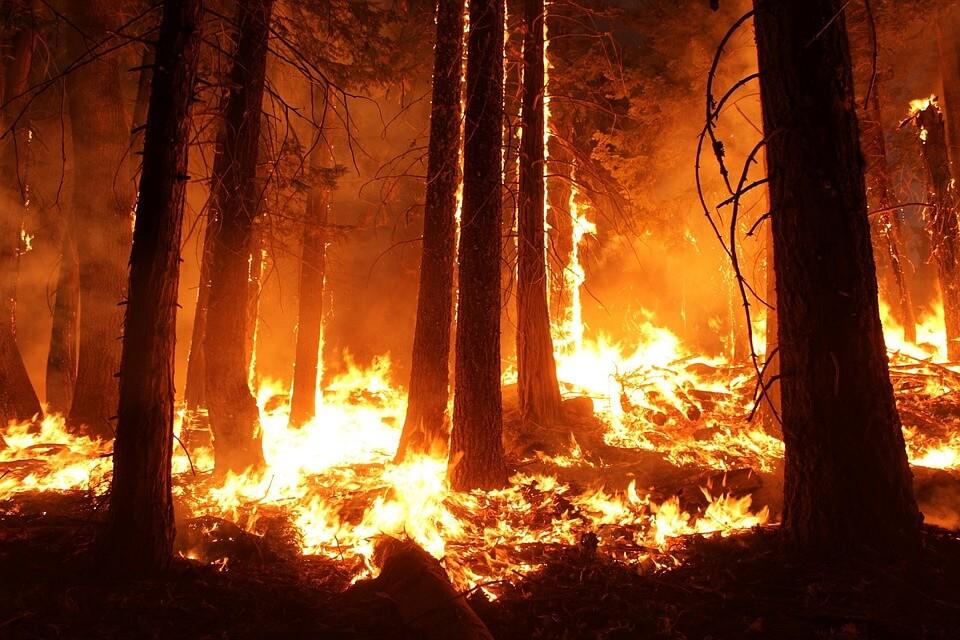 Otherworldly Incantations Weather Worldbuilding Wildfire